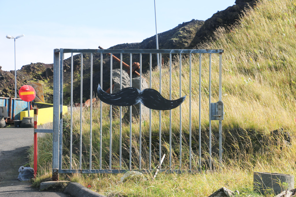 Mustache gate