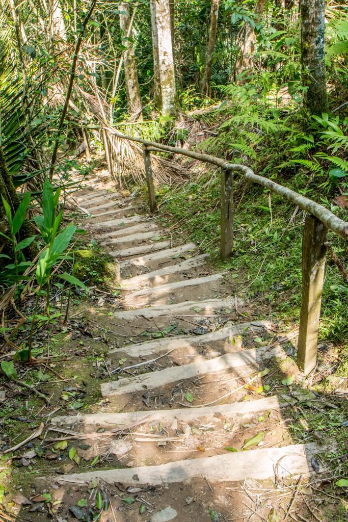 Sierra Maestra Comandancia de La Plata Trail