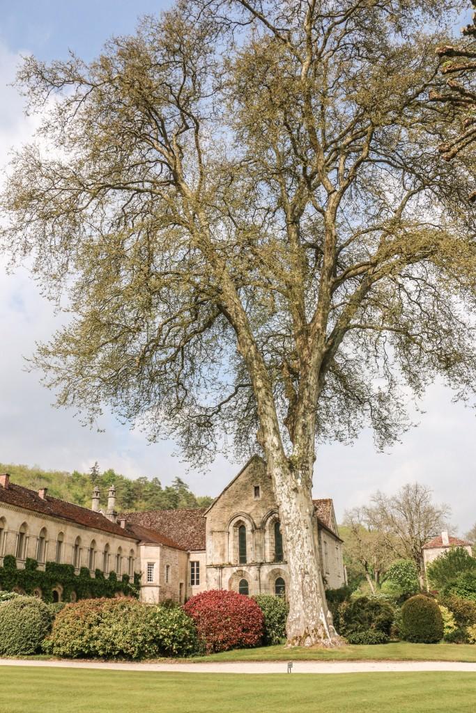 Abbey Fontenay - Gardens