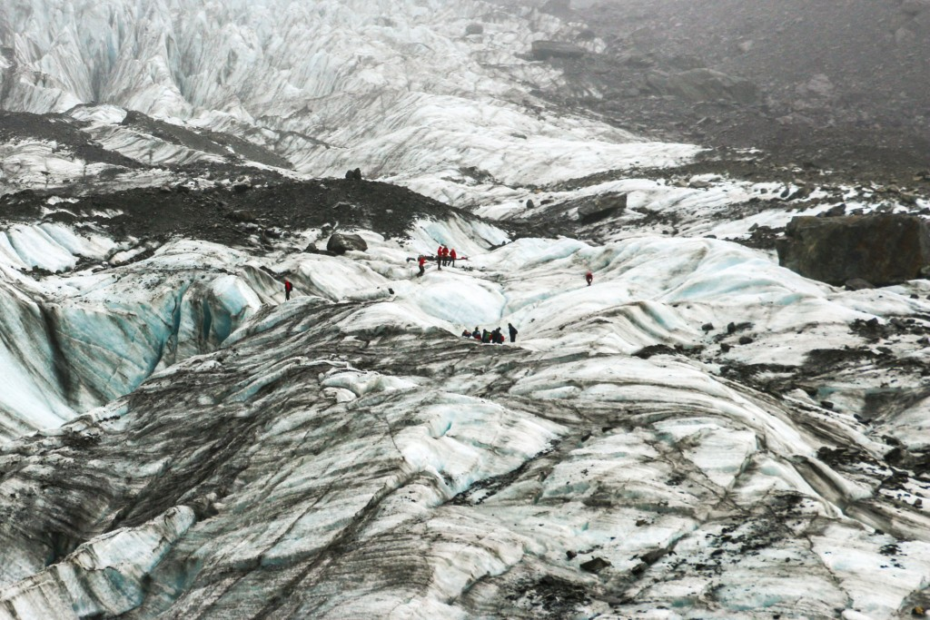 Fox glacier hiking