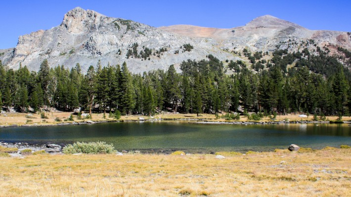 3 days in Yosemite during the Summer
