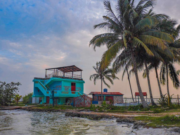Cuba Highlights Diving